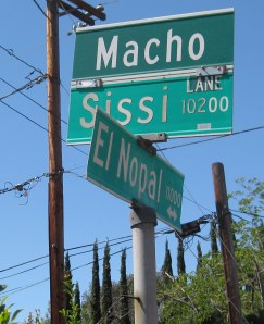 Street sign in Santee, Calif.