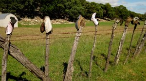 Boots decorate a fence at the Boot Hill Ranch in the Hill Country