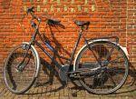Ben bike photo 19