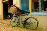 Ben bike photo 20